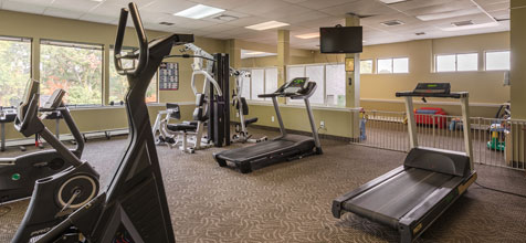 Tanglewood Village Gym